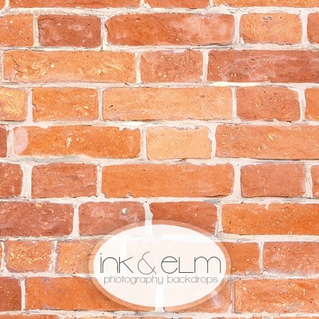 Photography Brick Backdrop <br> City Brickers