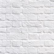 Cement, Brick, & Tile Backdrops