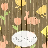 Photography Backdrop <br> Wooden Spring