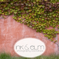 Photography Backdrop <br> Santa Barbara Ivy