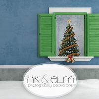 Photography Backdrop <br> Yuletide Window