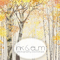 Photography Backdrop <br> Autumn Birches