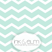 Photography Backdrop <br> Minty Chevrons