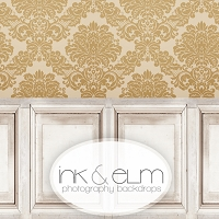 Photography Backdrop <br> Wainscoting with Gold Damask