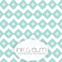 Photography Backdrop <br> Get Real Teal Ikat