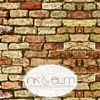 Photography Brick Backdrop <br> New Mexico Brick