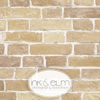 Photography Brick Backdrop <br> Sandy Beach Brick