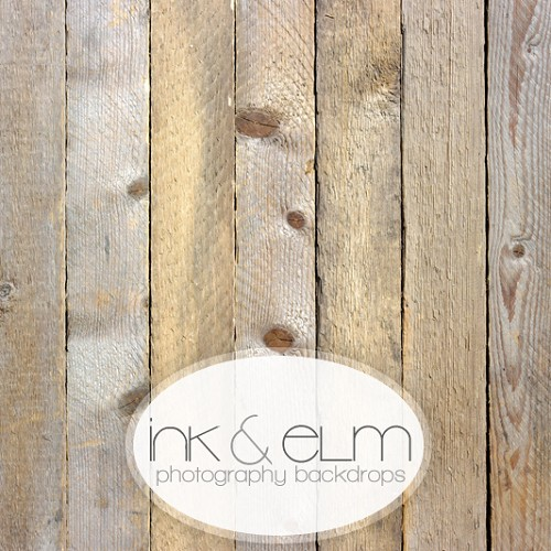 Photography Wood Backdrop <br> Wooden Nickels